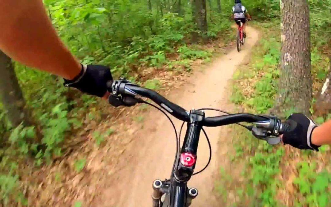 Wolfman Mountain Bike 101